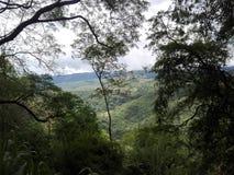 Naturaleza de Sri Lanka Fotos de archivo libres de regalías