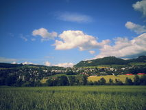 Naturaleza 2013 2014 de Suiza fotografía de archivo libre de regalías