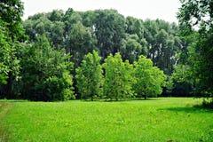 Naturaleza de Ucrania Myrhorod Imagen de archivo