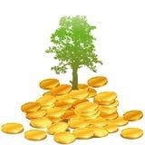 Naturaleza del dinero Foto de archivo