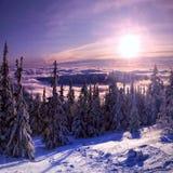 Naturaleza del invierno Imagenes de archivo