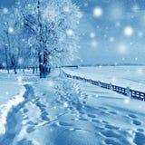 Naturaleza del invierno, caída de la nieve Imágenes de archivo libres de regalías