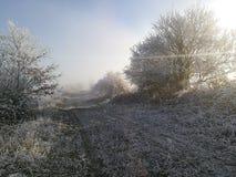 Naturaleza del invierno en República Checa fotografía de archivo libre de regalías