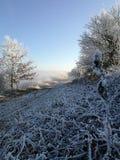 Naturaleza del invierno en República Checa foto de archivo libre de regalías