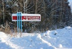 Naturaleza del invierno en una nieve Fotos de archivo