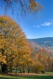Naturaleza del otoño Imagen de archivo