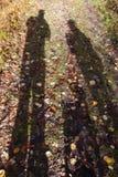 Naturaleza del otoño fotografía de archivo libre de regalías