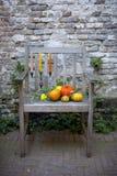 Naturaleza del otoño Fruta de la caída en la madera thanksgiving verduras del otoño en una silla vieja en el jardín imagenes de archivo