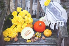 Naturaleza del otoño Fruta de la caída en la madera thanksgiving verduras del otoño en una silla vieja en el jardín, espacio libr Foto de archivo