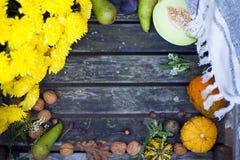 Naturaleza del otoño Fruta de la caída en la madera thanksgiving verduras del otoño en una silla vieja en el jardín, espacio libr Fotografía de archivo