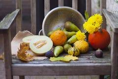 Naturaleza del otoño Fruta de la caída en la madera thanksgiving verduras del otoño en una silla vieja en el jardín, espacio libr Fotografía de archivo libre de regalías