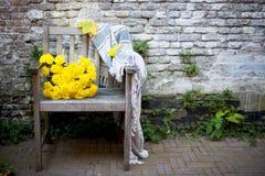 Naturaleza del otoño Fruta de la caída en la madera thanksgiving verduras del otoño en una silla vieja en el jardín, espacio libr Imagenes de archivo