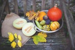 Naturaleza del otoño Fruta de la caída en la madera thanksgiving verduras del otoño en una silla vieja en el jardín, espacio libr Foto de archivo libre de regalías