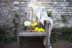 Naturaleza del otoño Fruta de la caída en la madera thanksgiving verduras del otoño en una silla vieja en el jardín, espacio libr Fotos de archivo libres de regalías