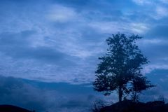 Naturaleza del paisaje en su mejor Fotos de archivo