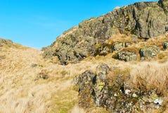 Naturaleza del spirng de Escocia Imagenes de archivo