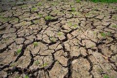 Naturaleza del suelo seco después primero de llover Fotografía de archivo libre de regalías