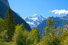 Naturaleza del yermo en las montan@as suizas imagen de archivo libre de regalías
