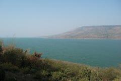 Naturaleza delante de la presa Foto de archivo