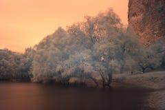 Naturaleza en Bratislava en la puesta del sol Fotos de archivo