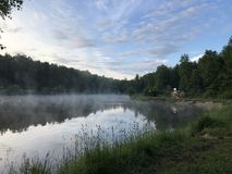 Naturaleza en el bosque de la mañana imagen de archivo