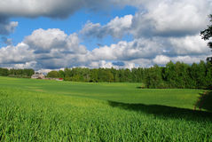 Naturaleza en el districto de Kuldiga. Imagenes de archivo