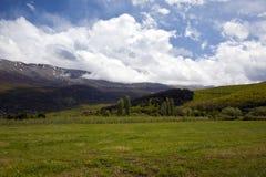 Naturaleza en el lago Ohrid macedonia fotografía de archivo libre de regalías