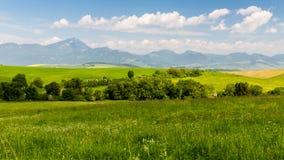Naturaleza en la región de Liptov, Eslovaquia en el verano 2015 Fotografía de archivo libre de regalías