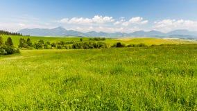 Naturaleza en la región de Liptov, Eslovaquia en el verano 2015 Foto de archivo