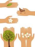Naturaleza en manos humanas Foto de archivo
