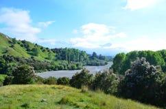 Naturaleza en Nueva Zelanda Fotos de archivo