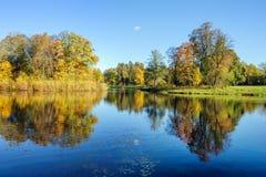 Naturaleza en otoño fotografía de archivo libre de regalías