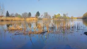 Naturaleza en otoño Imagenes de archivo