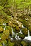 Naturaleza en Serbia Fotografía de archivo libre de regalías