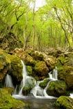 Naturaleza en Serbia Fotos de archivo libres de regalías