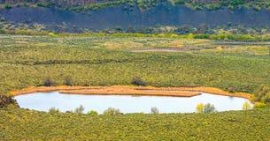 Naturaleza escénica Washington State - parque de estado Lago-seco de las caídas de Sun imágenes de archivo libres de regalías