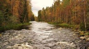 Naturaleza finlandesa Fotos de archivo