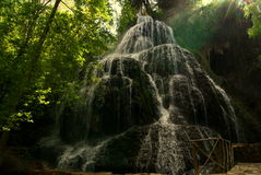 Naturaleza fresca Imagenes de archivo