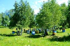 Naturaleza hermosa Altaya Fotos de archivo