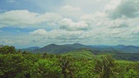 Naturaleza hermosa de la botánica del Forest Green de la selva y del follaje fresco de la palmera debajo del sol brillante del cl almacen de video
