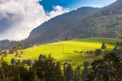 Naturaleza hermosa de las montañas y de la colina en verano Foto de archivo libre de regalías