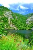 Naturaleza hermosa del lago de la montaña Foto de archivo