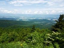 Naturaleza hermosa del parque nacional de Shenandoah foto de archivo