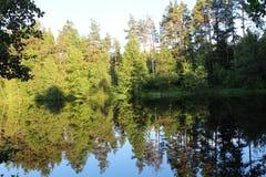 Naturaleza hermosa en el lago Imagenes de archivo