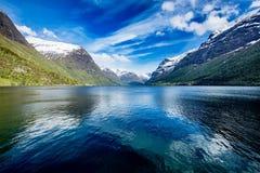 Naturaleza hermosa Noruega Fotos de archivo