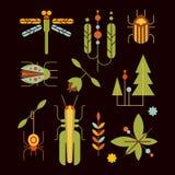 Naturaleza, insectos, hojas y vector de los iconos del árbol Imagen de archivo