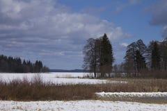 Naturaleza letona Invierno Fotografía de archivo