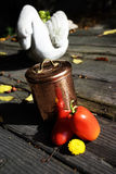 Naturaleza Muerta. Two red tomatoes and yellow flower, next to a old jar, and small swan sculpture in the back. Outdoor wood table Stock Images