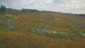 naturaleza norteña almacen de metraje de vídeo