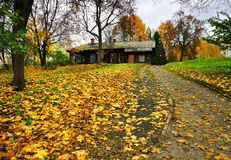 Naturaleza otoñal, casa de madera vieja Imagenes de archivo